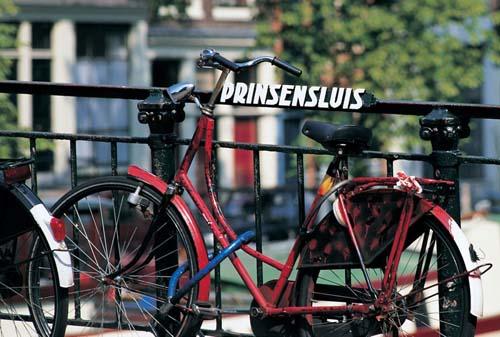 biciclette ad Amsterdam