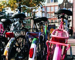 In bicicletta in Olanda