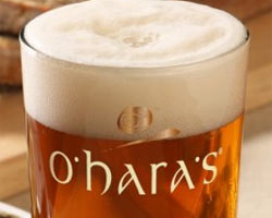 Birra artigianale irlandese