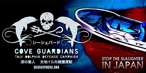 Sea Shepherd contro la caccia ai delfini