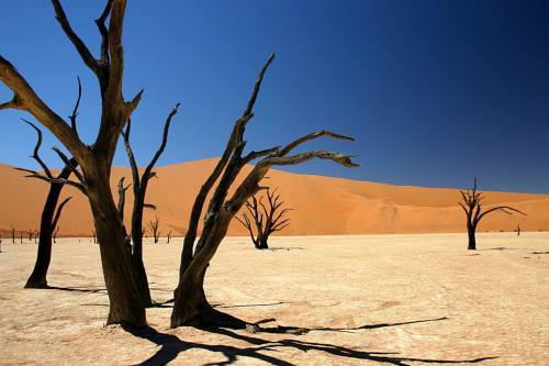 namibia-0224