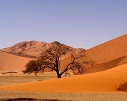 namibiadeserto-rosso-