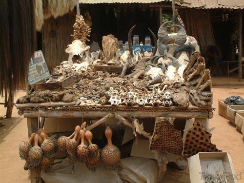 beninvoodoo-fetish-market-in-togo-niamey
