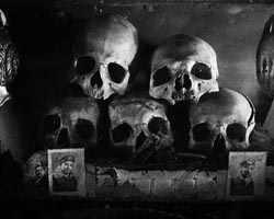 cimiterohome