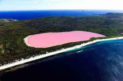 lago-hillier-australia-lago-rosa