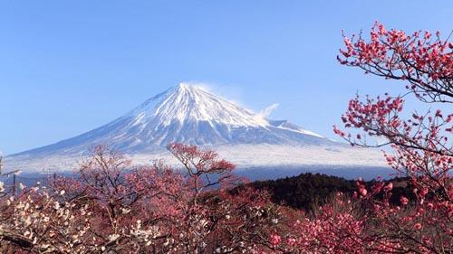 Giappone-Monte-Fuji