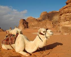giordania-e-wadi-rum 1