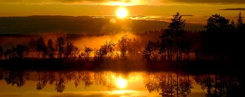 lapponia svedese 960 sol
