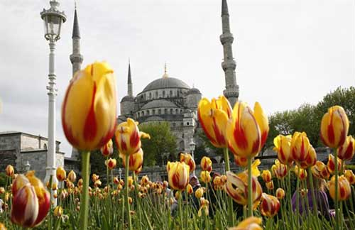 festival istanbul-primavera 470x305