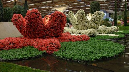 olanda Floraliën Ghent-48-12448