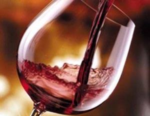 slow food vino e gusto ad andriano