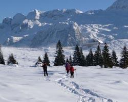 friuli montagna neve 17-586x390