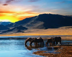 Mongolia home Gher-Paesaggio