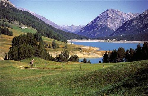 alpi valdidentro