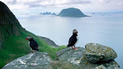nordland isola3