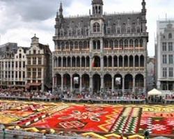 bruxelles 1-belgium-flower-carpet