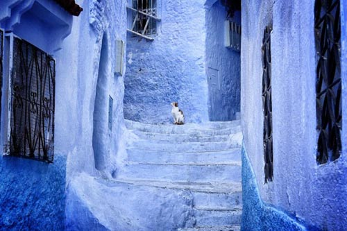marocco blue-streets-of-chefchaouen-morocco-4
