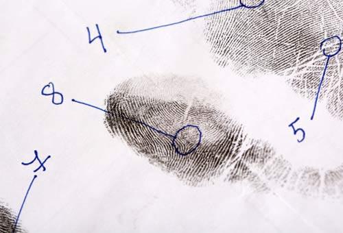 passporto gallery impronte