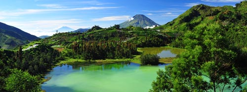 indonesia. 6 pg