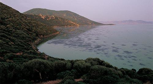 Tunisia nord lago Ichkeul