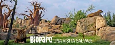 valencia bioparc