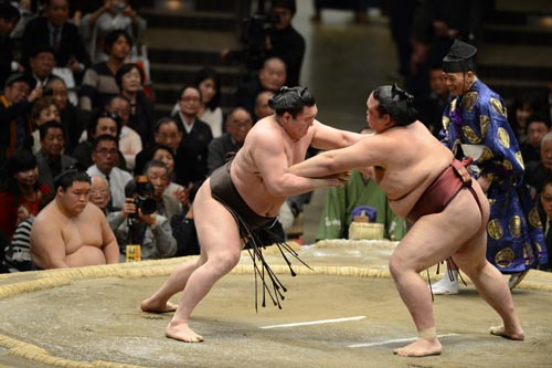 giappone sumo