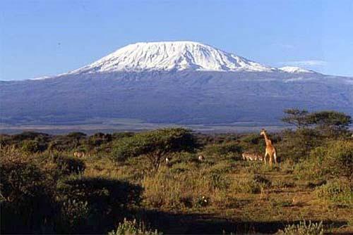 valentino Kilimangiaro - Copia