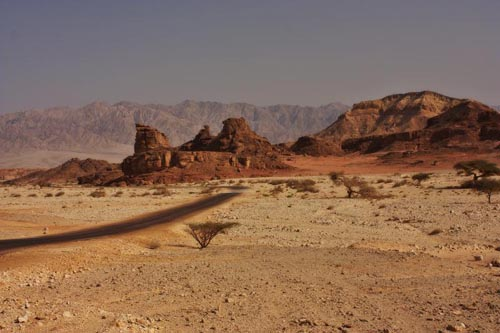 deserti 10 israel-negev-desert-139530694