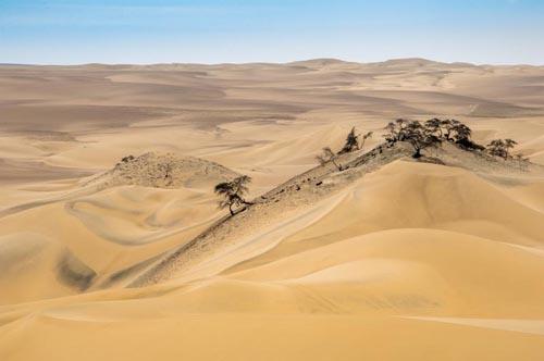 deserti 14 peru-nazca-desert-dunes-502811362