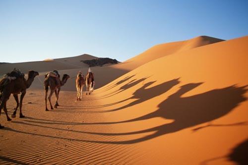deserti 1 Sahara desert Algeria1-638x425