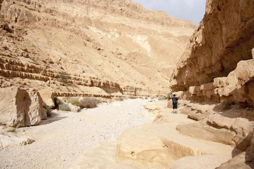 deserti 9 israel-judean-desert-524691523